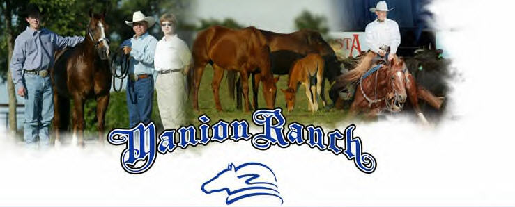 Manion Ranch cutting horse